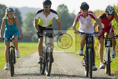 Poster Quattro amici in bicicletta lungo la strada.