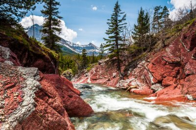 Poster Red Rock Creek in movimento e canyon