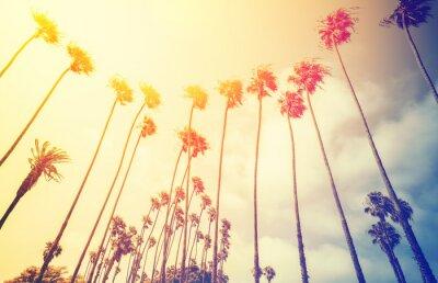 Poster Retro palme stilizzate al tramonto, a Santa Monica, Stati Uniti d'America.