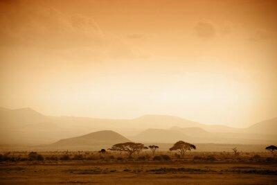 Poster savana africana al sorgere del sole