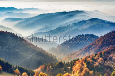 Poster Scenic mountain landscape. View on the Black Forest, Germany, covered in fog. Colorful travel background.