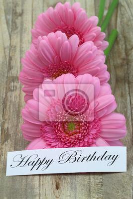 Scheda Di Buon Compleanno Con Margherite Rosa Gerbera Manifesti Da