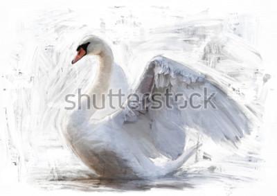Poster schizzo di cigno bianco / pittura a olio