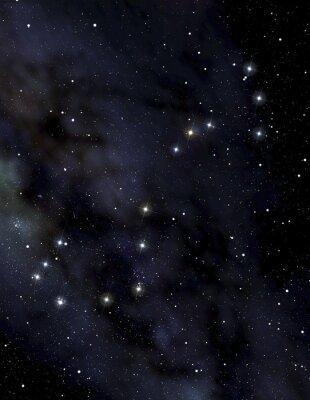 Poster Scorpion costellazione nel cielo notturno