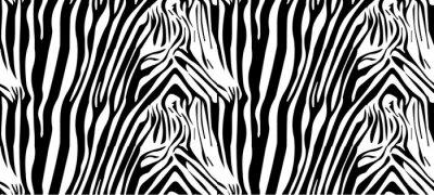 Poster Seamless motivo zebrato