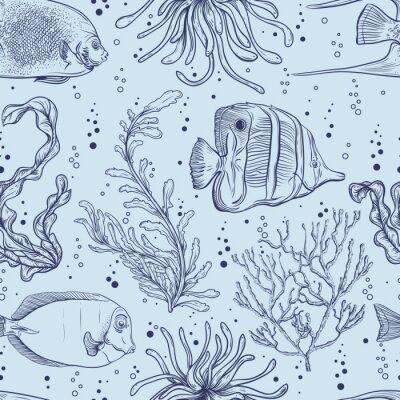Poster Seamless pattern con pesci tropicali, piante marine e alghe. Vintage mano disegnata illustrazione vettoriale vita marina. Design per spiaggia di estate, decorazioni, stampa, modello di riempimento, we