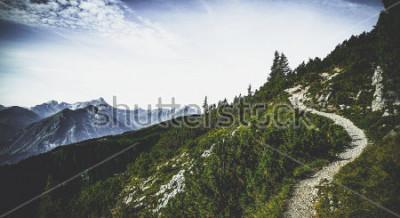 Poster Sentiero escursionistico attraverso le cime alpine boscose in estate sole con una vista di vette e gamme lontane in un paesaggio austriaco scenico