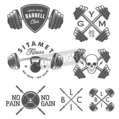 Poster Set di palestra epoca emblemi etichette ed elementi di design