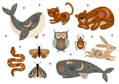 Poster set of isolated celestial animals