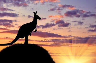 Poster Silhouette di un canguro con un bambino