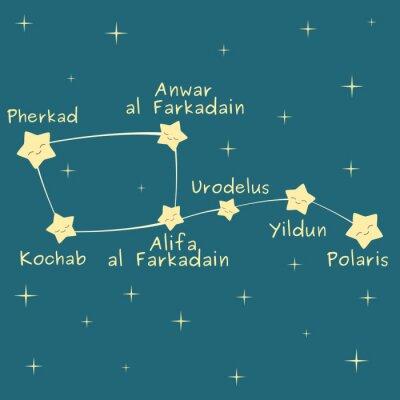 Poster simpatico cartone animato Piccolo Carro costellazione con il nome del illustrazione vettoriale stelle