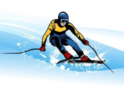 Poster sport invernali