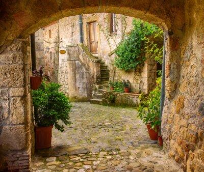 Poster Stradina di tufo della città medievale di Sorano con l'arco, piante verdi e ciottoli, Viaggi Italia sfondo