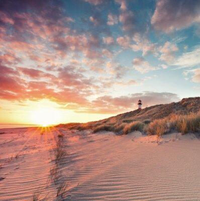 Poster Strand und Dünenlandschaft am Sylter Ellenbogen