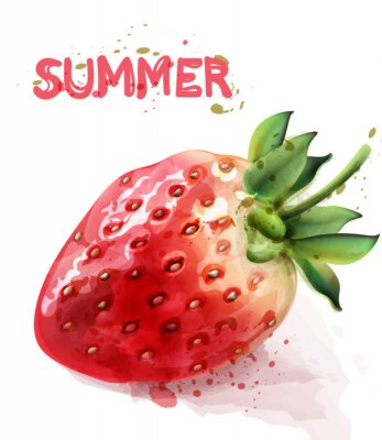 Poster Strawberry isolated Vector watercolor. Fresh fruit summer seasonal cards