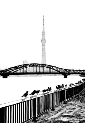 Poster Sumida Bridgeview