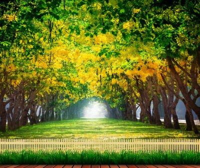 Poster terrazza in legno con fresco e verde bella estate fioritura y