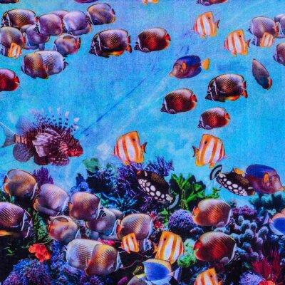 Poster tessitura di stampa acquario tessuto a righe