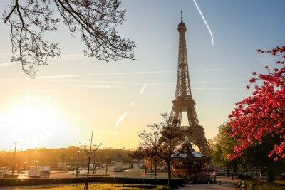 Poster Torre Eiffel con l'albero di primavera a Parigi, Francia