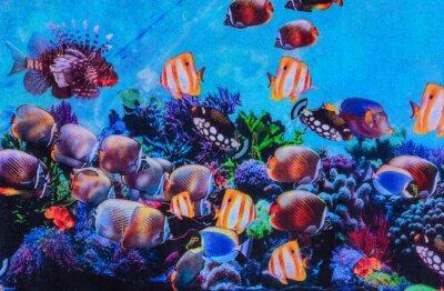 Poster trama del tessuto a righe di stampa acquario