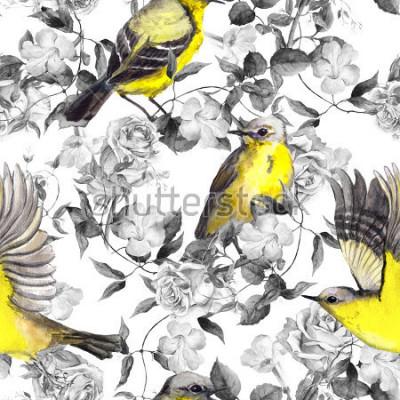 Poster Uccelli e fiori selvaggi del prato. Acquerello. Neutro seamless in colori monocromatici in bianco e nero con uccelli luminosi