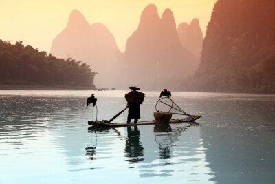 Poster Uomo di pesca cinese con gli uccelli cormorani