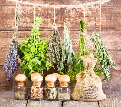 Poster varie erbe fresche e secche
