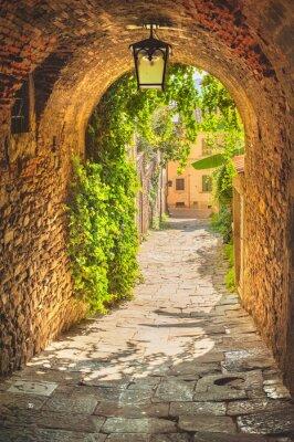 Poster Vecchie vie della città medievale toscano e un verde.