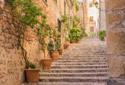 Poster Vecchio villaggio di strada scale Mediterraneo