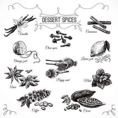 Poster Vector hand drawn set con dessert spezie.