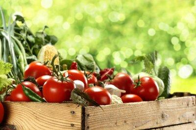 Poster verdure