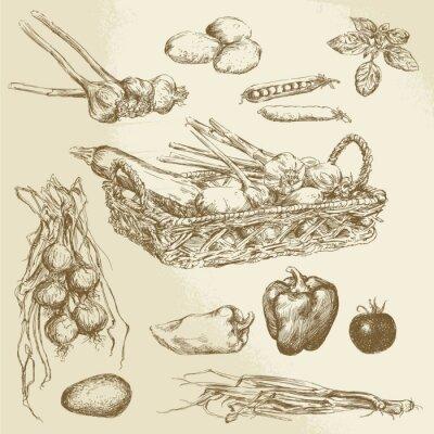 Poster verdure - collezione disegnata a mano