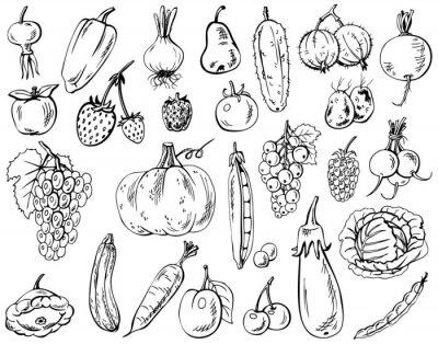 Poster verdure, frutta e bacche