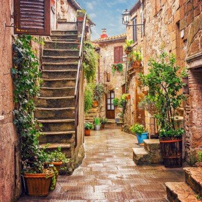 Poster Vicolo nel centro storico di Pitigliano Toscana Italia