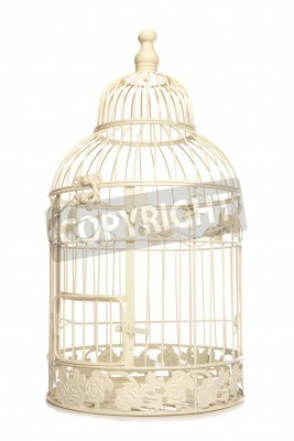 Poster Vintage looking bird cage isolated studio cutout