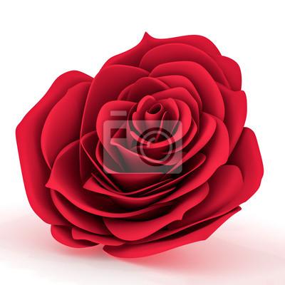 Vista Frontale Di Una Rosa Rossa Manifesti Da Muro Poster Incontri