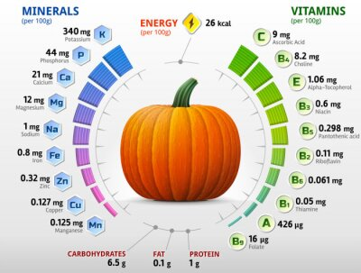 Poster Vitamine e minerali di zucca. Nutrienti zucca