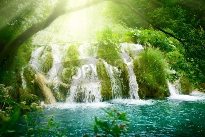 Poster waterfall in deep forest