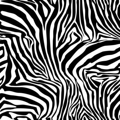 Poster Zebra Stripes. Sfondo. Modello. Un modello senza soluzione di continuità.