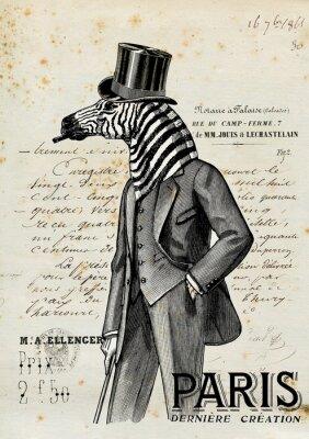 Poster Zebra uomo