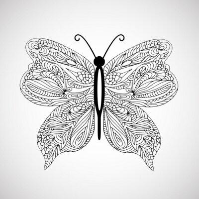 Quadro A mano farfalla Doodle