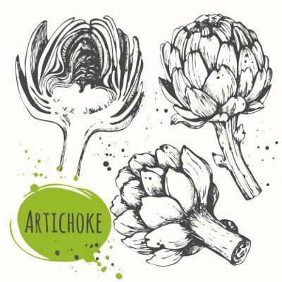 Quadro Aartichoke. Set di disegnati a mano carciofo. alimenti biologici freschi.