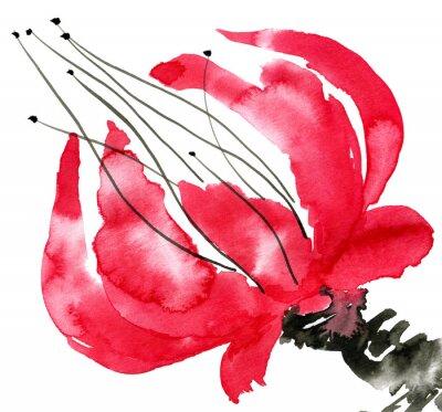 Quadro Abstract fiore rosso. Disegno di papavero. Acquarello e illustrazione inchiostro in stile sumi-e, u-sin. pittura tradizionale orientale. Isolato su sfondo bianco.
