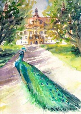 Quadro Acquarello illustrazione di pavone in parco e facciata anteriore del castello Eggenberg a Graz, in Stiria, Austria