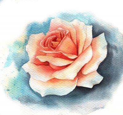Quadro Acquerello di rosa