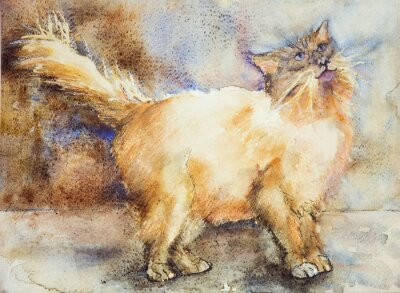Quadro Affascinato cercando gatto a pelo lungo. La tecnica tamponando vicino ai bordi dà un effetto soft focus dovuto alla rugosità superficiale alterata della carta.