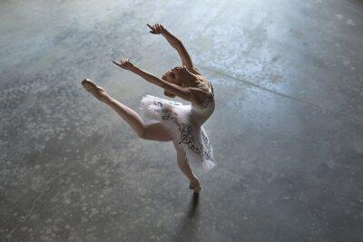 Quadro al chiuso ballerina