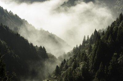 Quadro Alta montagna nella nebbia e nuvole