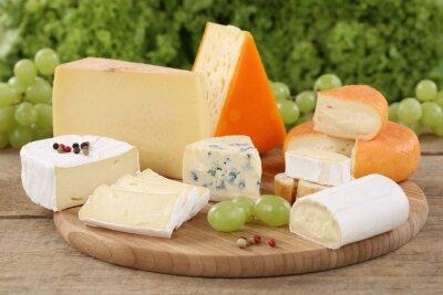 Quadro Auswahl un Käse wie Camembert, Bergkäse und Schweizer Käse