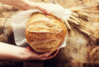 Quadro Baker in possesso di un pezzo di pane su bacgkround rustico